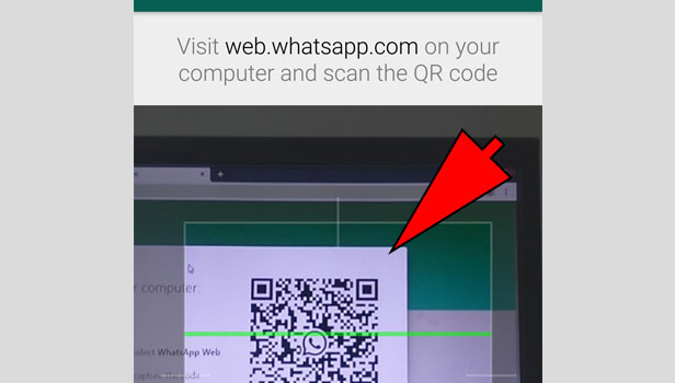 use WhatsApp Web